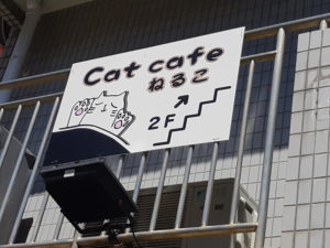 catcafeねるこ